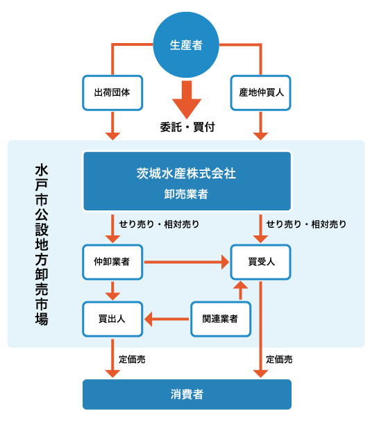 茨城水産株式会社 市場の役割